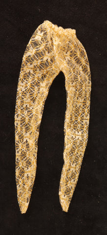 Mystery Item -- White and Gold Lace Tights
