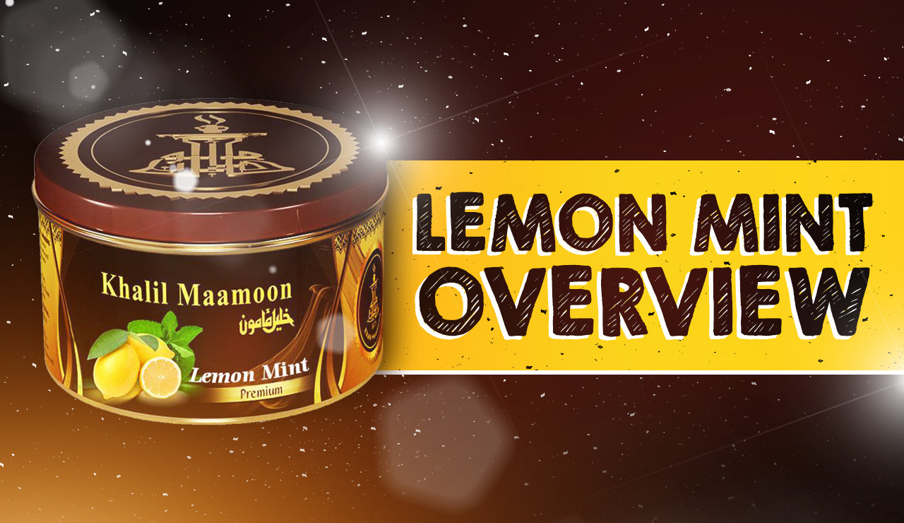 Khalil Maamoon | Lemon Mint Overview