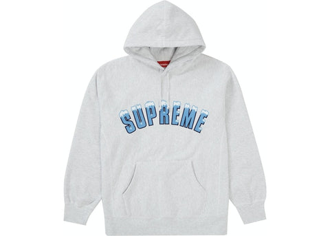 Supreme Icy Arc Hooded Sweatshirt Ash Grey