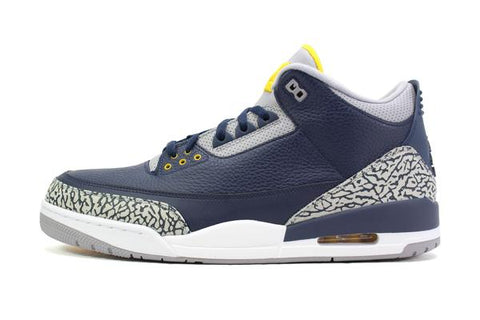 Air Jordan Retro 3 Michigan PE