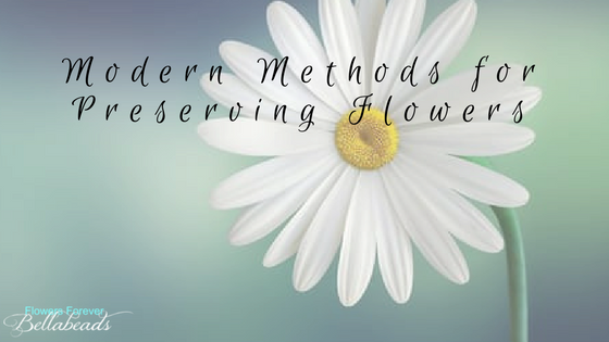 Modern Methods For Preserving Flowers