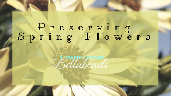 Preserving Springtime Flowers