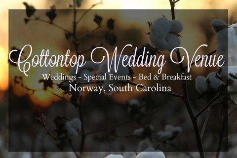 Cottontop Wedding Venue