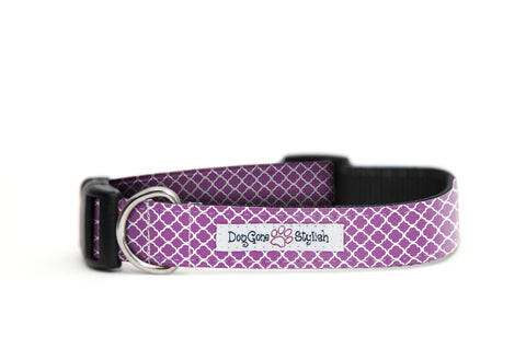 Purple and White Flower Dog Collar