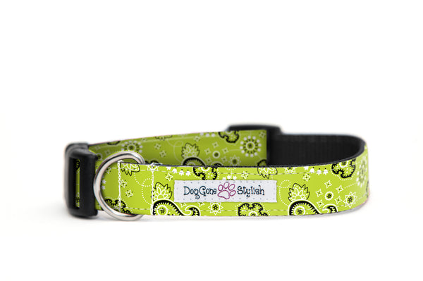 Green Bandana Dog Collar