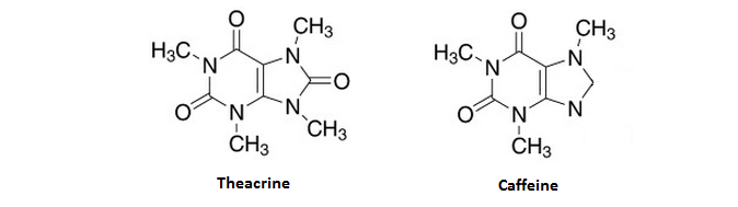 Difference Between Caffeine and Theacrine