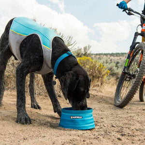 Ruffwear Bivy Travel Dog Bowl dog drinking out of it