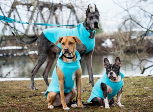 CLEARANCE! Baseline Fleece Pullover - Lightweight Dog Coat