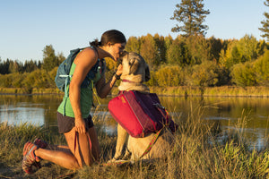 Ruffwear Commuter Dog Backpack Lifestyle Shot Kissing