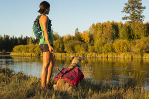 Ruffwear Commuter Dog Backpack Lifestyle Shot Hiking