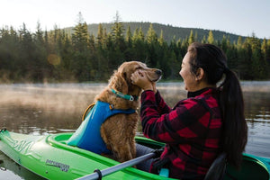 NEW! Float Coat Dog Life Jacket by Ruffwear - Redesigned for 2021