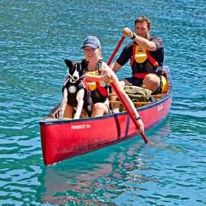 Float Doggy by D-Fa Dog Life Jacket on Dog in Canoe