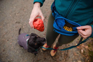 NEW! Home Trail Hip Pack - Dog Walking Bag