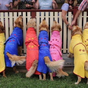 SurfDog Dog Beach Robes in all colours