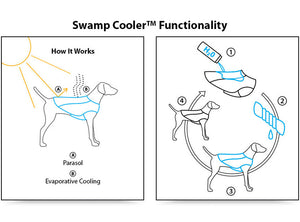 Graphic How Ruffwear's Swamp Cooler works via evaporative cooling