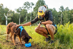 NEW!  Trail Runner Bowl - Ultralight, 'Packs Up Small' Dog Bowl