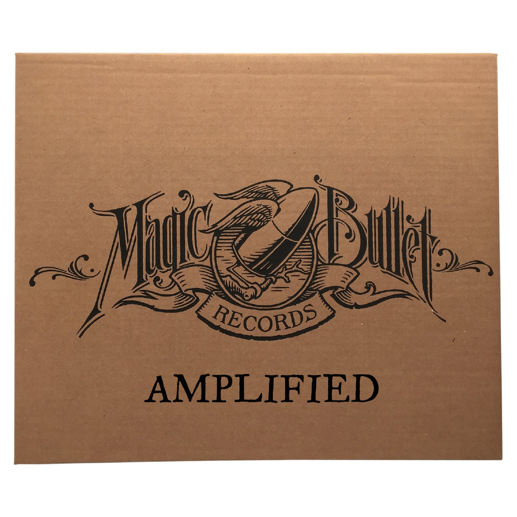 "MYSTERY BOX #1: ""AMPLIFIED"" Vinyl Assortment"
