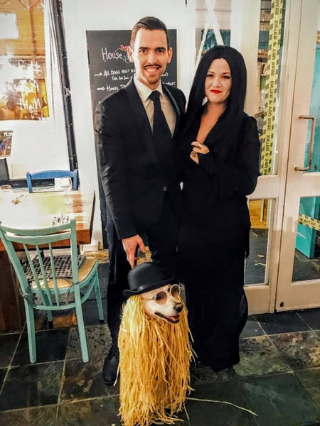 Addams family dog costume
