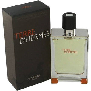 Hermes Terre D Hermes EDT 100ml For Men - MyPerfumeShopNG