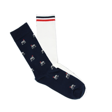 Load image into Gallery viewer, Socks Man Pack - TROY + ELEPHANT