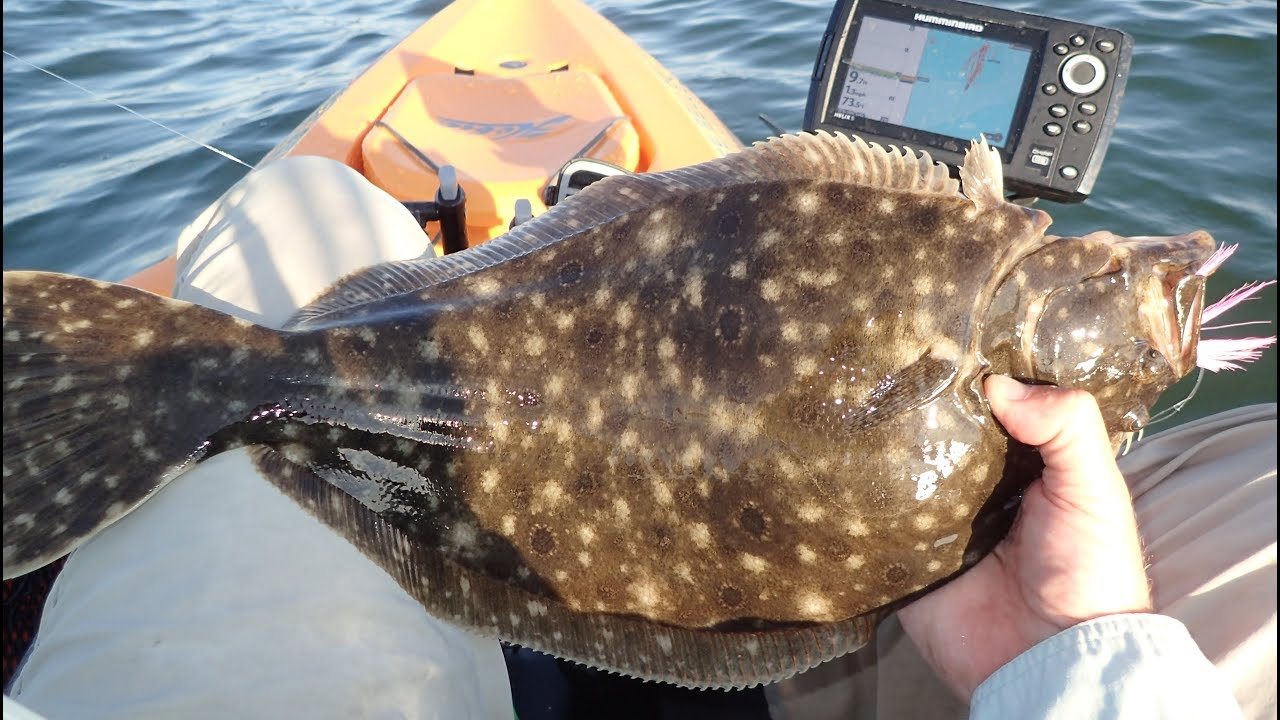 Flounder Fishing (Tips and How-to Guide)