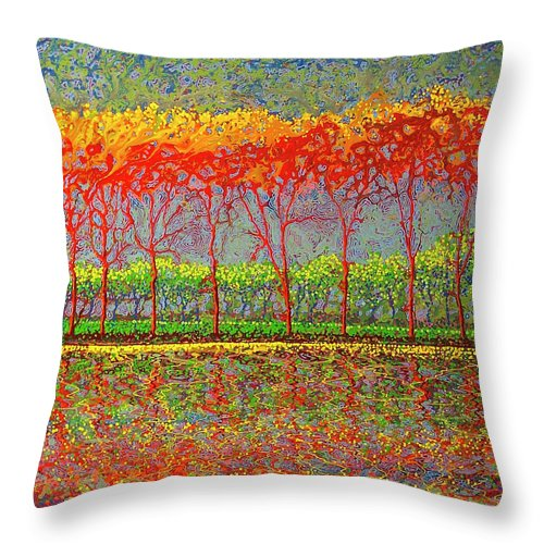 Optimistic Spin - Throw Pillow