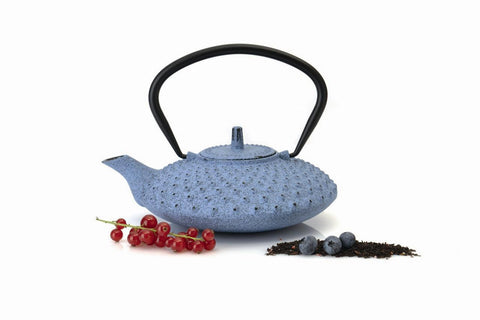 Studio Blue Cast Iron Teapot 0.8L