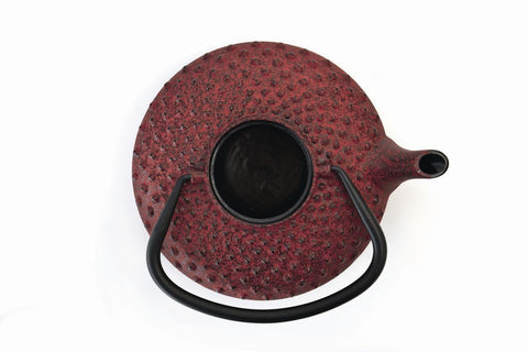 Studio Red Cast Iron Teapot 0.8L