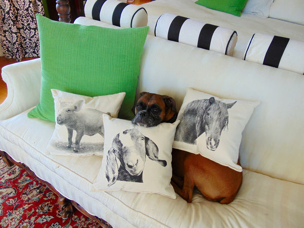 Fabulous Pillows of Real Farm Animals - shopalmostheaven