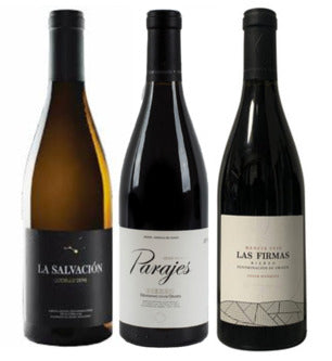 Cesar Marquez - Terroirs of Bierzo mixed case - Terroir Wine Imports - buy wine online Ontario, Canada