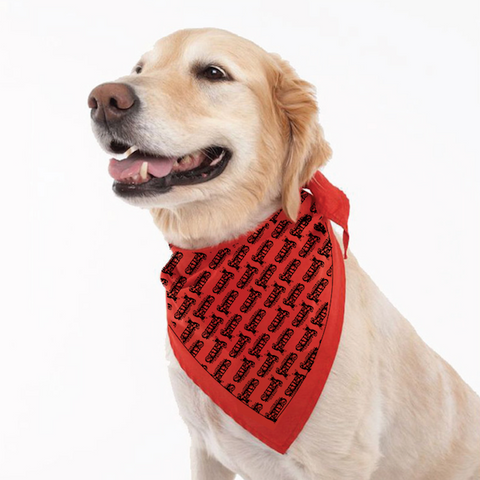 C.A.T.S. Foundation Red Bandana