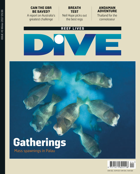 DIVE Winter 2017