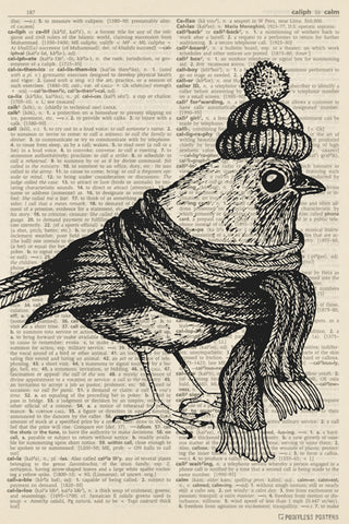 Bird In Winter Clothes (dictionary background) Poster