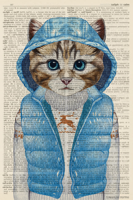 Cat In A Coat Anthropomorphic Animal (dictionary background) Poster