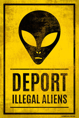 Deport Illegal Aliens Poster