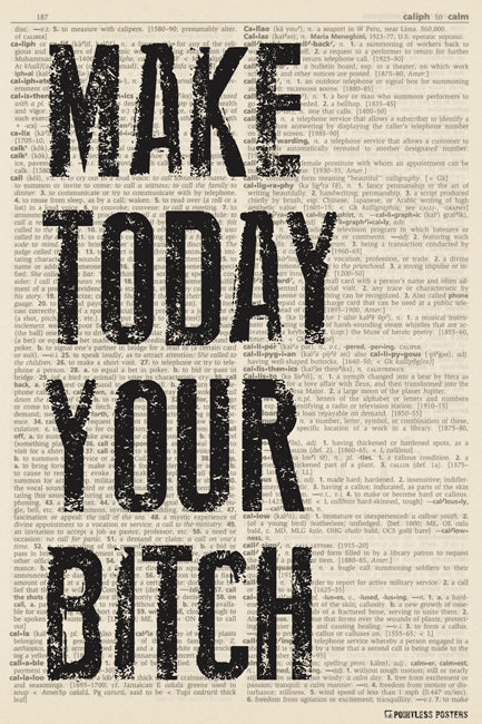 Make Today Your Bitch (dictionary background) Poster