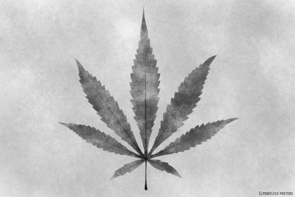 Marijuana Charcoal Sketch Weed Art Poster