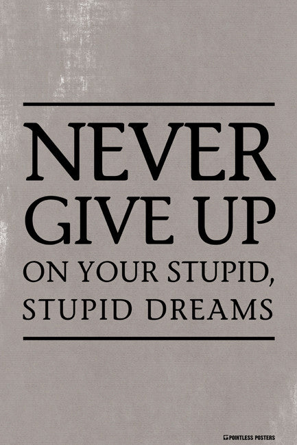 Never Give Up On Your Stupid, Stupid Dreams Poster