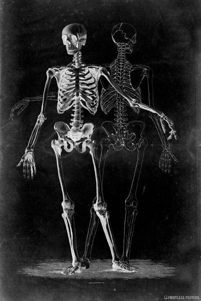 Two Skeletons On Black Gothic Poster