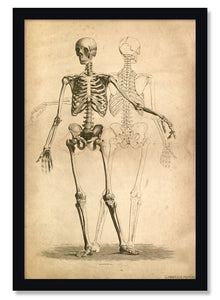 Two Skeletons Gothic Poster