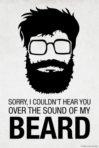 Sorry I Couldn't Hear You Over The Sound Of My Beard Poster