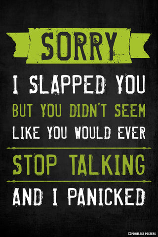 Sorry I Slapped You Poster