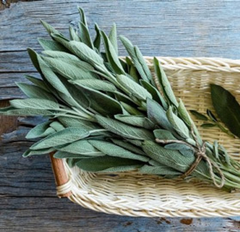 Organic Sage Leaf Extract helps reduce thinning hair
