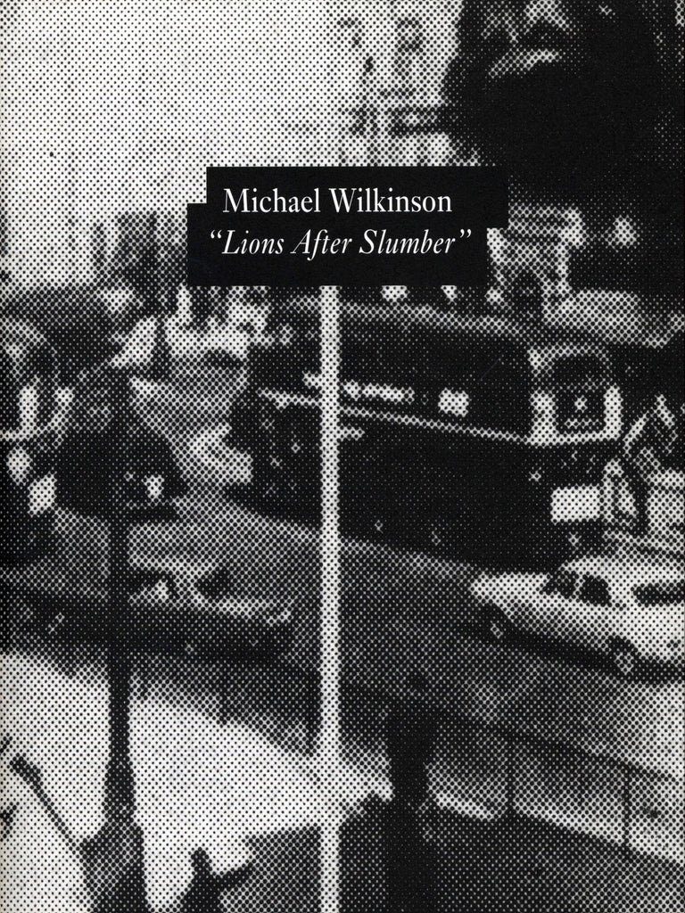 MICHAEL WILKINSON: LIONS AFTER SLUMBER - Blum & Poe