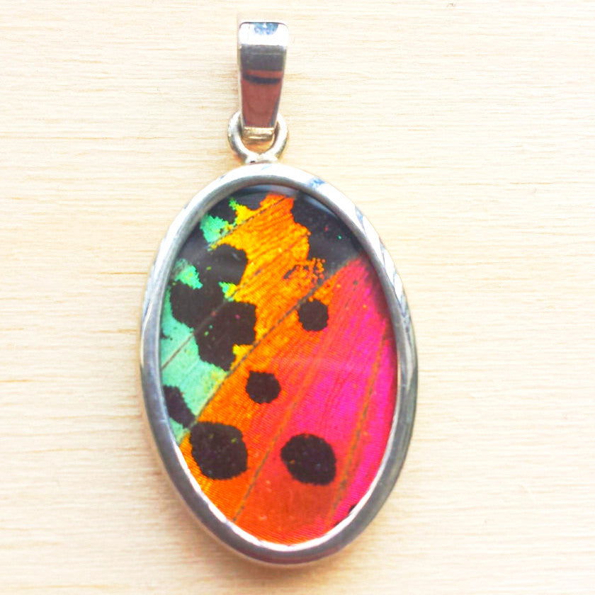 Sunset Moth Pendant - Free As A Bird Jewelry