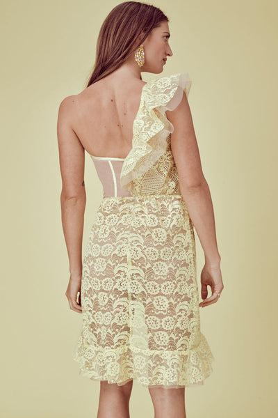 Just Two Girls... LEMONS Lace Midi Dress Product Back