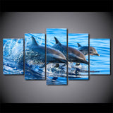 Dolphin Group 5 Piece Canvas