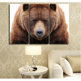 Grizzly Bear 3 Piece Canvas
