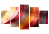 Limited Edition Colorful Hair 5 Piece Canvas