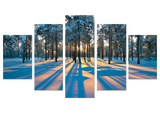 Frosty Morning 5 Piece Canvas